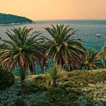 Kanárské ostrovy – dovolená na jednom z nejoblíbenějších míst v Atlantiku