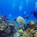 Objevte podmořské perly Středomoří